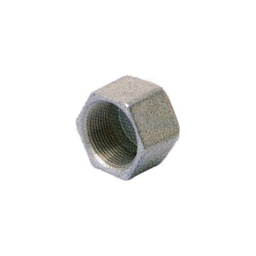 Bouchon Fonte galavanisée Femelle tête hexagonale image