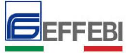 EFFEBIlogo