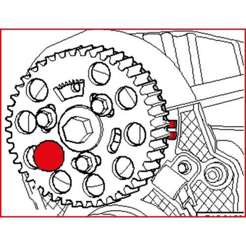 Pige de blocage de pompe à injection pour VAG image